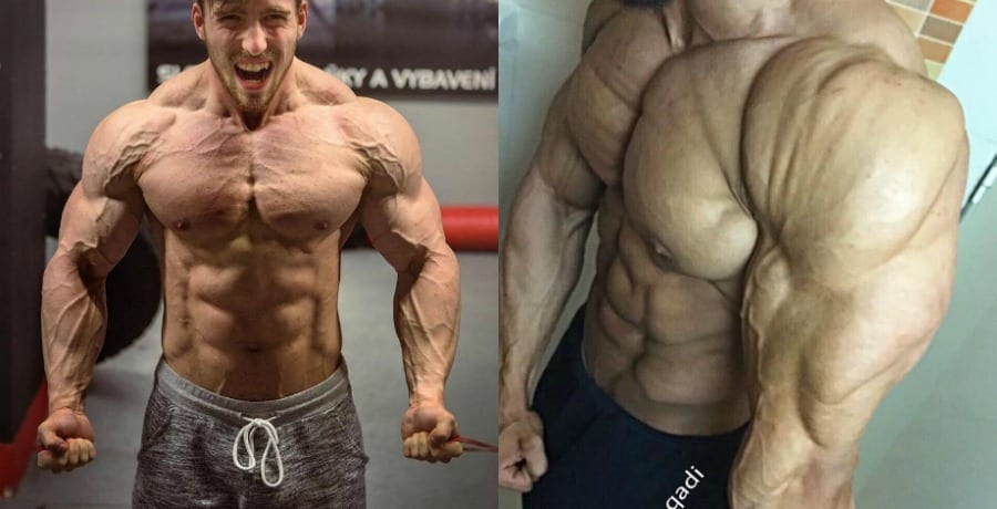 Tren legal steroid what are 2 side effects caused by abusing anabolic steroids